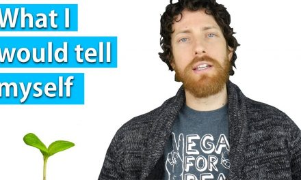 3 Tips for New Vegans