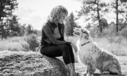 Animal Tracker 2019: Importance Of Animal Protection