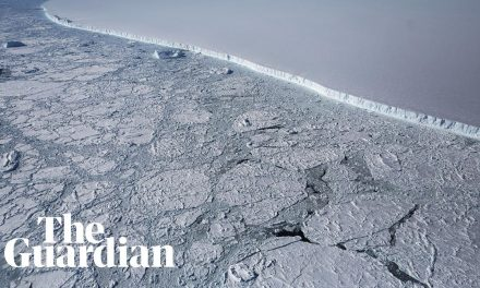 'Precipitous' Fall in Antarctic Sea Ice Since 2014 Revealed