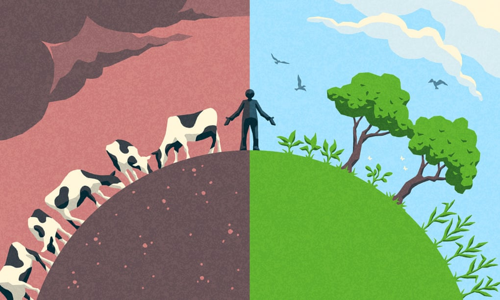 We Can't Keep Eating As We Are – Why Isn't the IPCC Shouting This From the Rooftops?