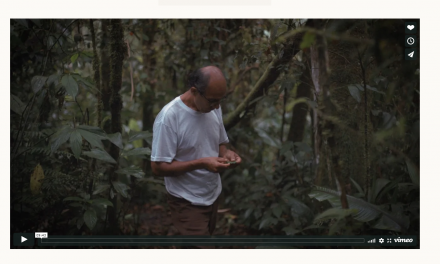 In Ecuador, One Man's Mission to Restore a Piece of the Rainforest