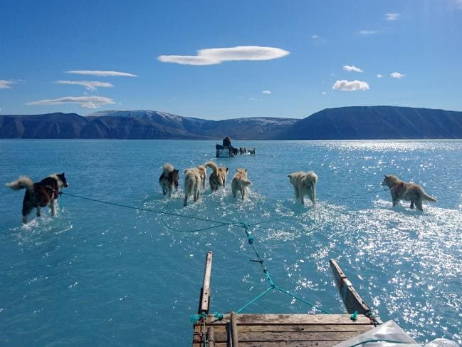 Greenland Succumbs