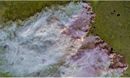 'Unprecedented' Wildfires in Arctic Have Scientists Concerned