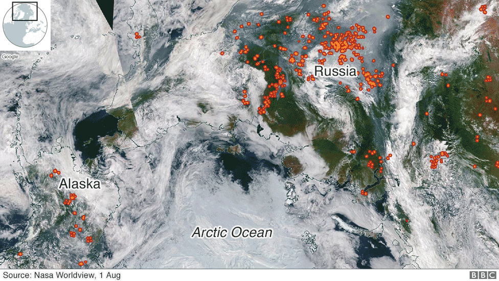 Arctic Wildfires: How Bad Are They and What Caused Them?