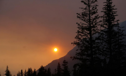 Alaska's Hottest Month Portends Transformation into 'Unfrozen State'