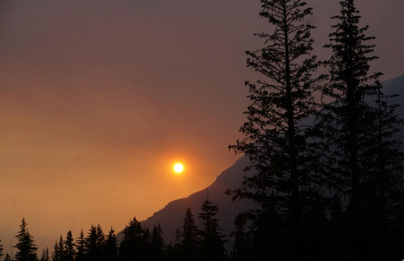 Alaska's Hottest Month Portends Transformation into 'Unfrozen State'