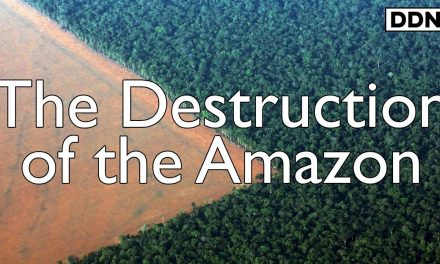 The Destruction of the Amazon Rainforest | George Monbiot
