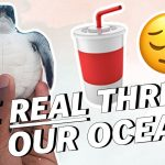Plastic? What's Really Killing Our Oceans?