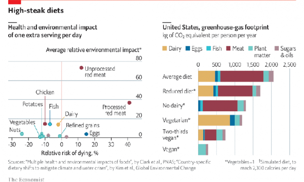 How Much Would Giving Up Meat Help the Environment?