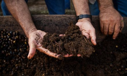 Make the Connection: Soil Health = Human Health