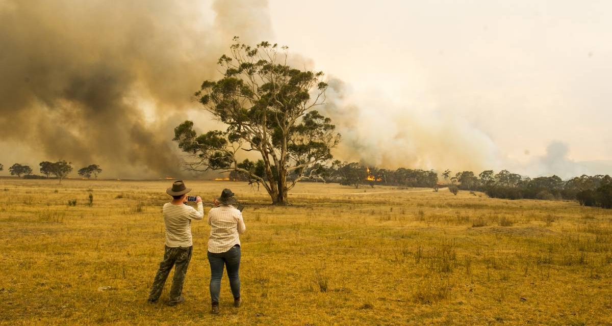 The Bushfire Crisis Is a Wake-Up Call We Can't Afford to Ignore