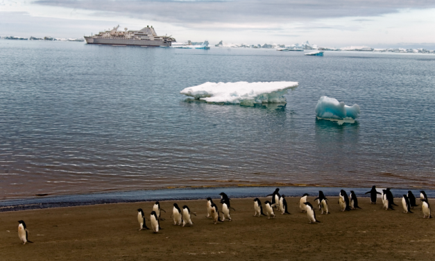 Temperature in Antarctica Soars Past 69°F as NOAA Reports Last Month Was World's Hottest January on Record