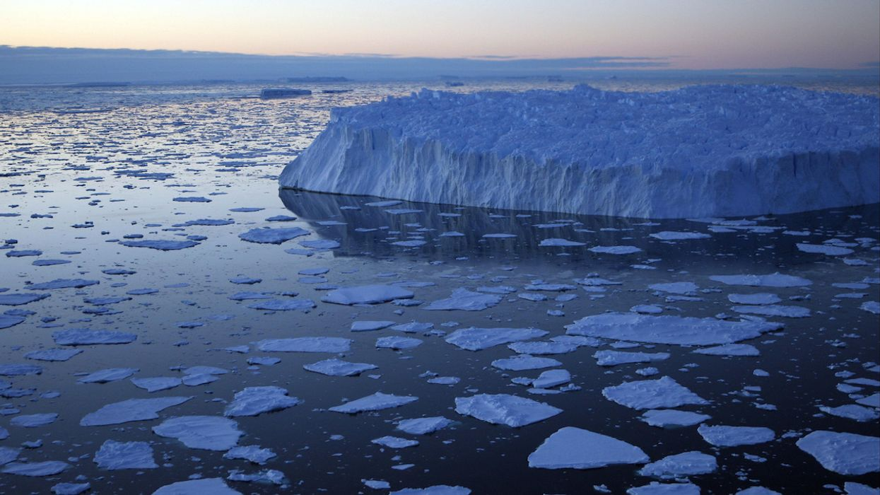 Microplastics Found in Antarctic Sea Ice Samples for First Time, Scientists Say