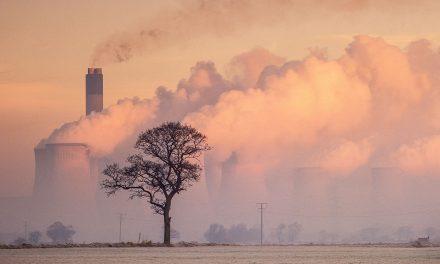 The Biomass Fiasco