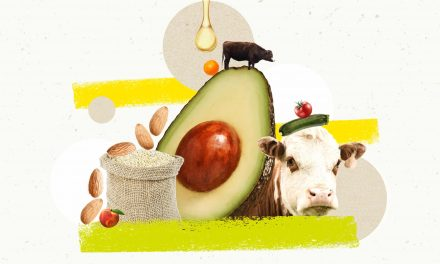 Why You Should Go Animal-Free: 18 Arguments for Eating Meat Debunked