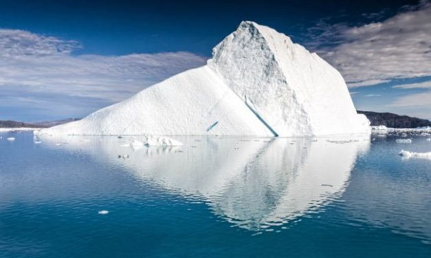 Arctic Heat Overwhelms Green Infighting Issues