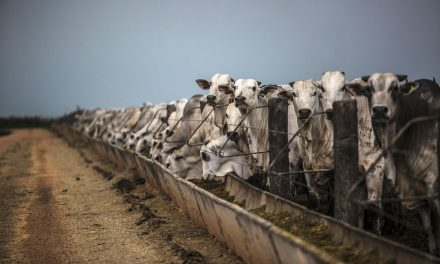 Methane Emissions Have Jumped a Staggering Nine Percent Since Last Decade