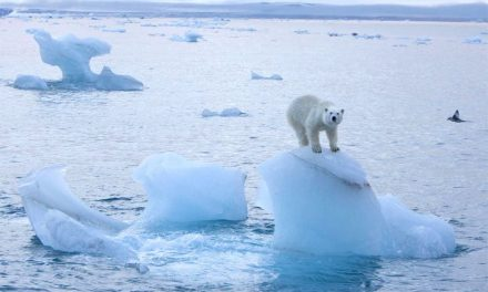 The Climate Inertia Bugaboo