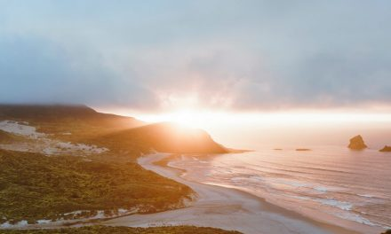 Dunedin Becomes Latest City To Back Regenerative 'Doughnut Economics'
