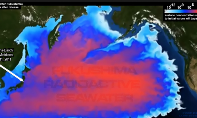 If Fukushima's Water is Safe, Then Drink it!