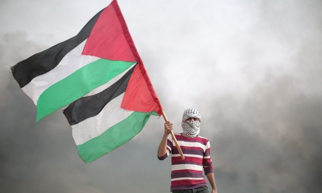 Fifteen Thoughts on Palestine